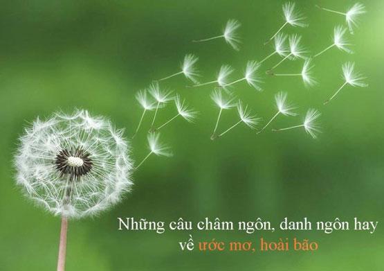 Những câu nói hay về ước mơ, câu danh ngôn hay về ước mơ hoài bão