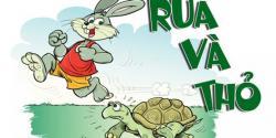 Ý Nghĩa Và Bài Học Rút Ra Từ Truyện Ngụ Ngôn Rùa Và Thỏ