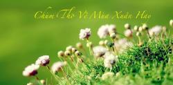 Những bài thơ hay nhất về đề tài mùa xuân