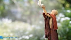Những cuốn sách hay về Phật giáo đọc để an vui và hạnh phúc
